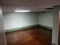 Stain and Epoxy Basement